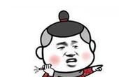 """岭南写真: 粤西年例节令外国友人""""大开眼界"""""""