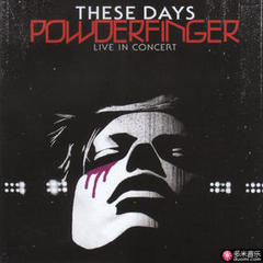 these days: powderfinger live in concer