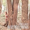 beautiful things (deluxe)