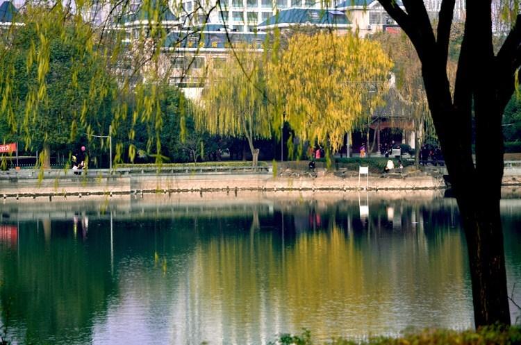 义乌城市风景2号楼