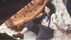 サリー 台版<流星花园>片尾曲