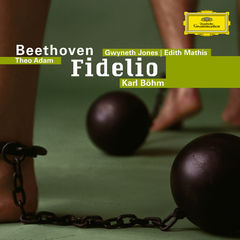 beethoven: fidelio(2 cd's)