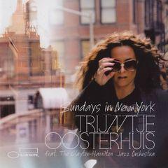 sundays in new york