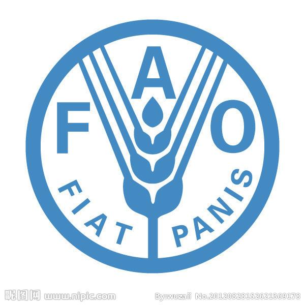 联合国粮食及农业组织