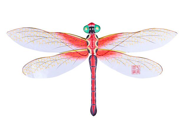 手绘蜻蜓风筝图片大全