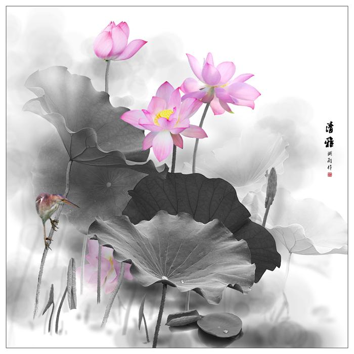 江南风景照有莲花
